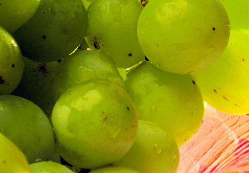 Greengrapes