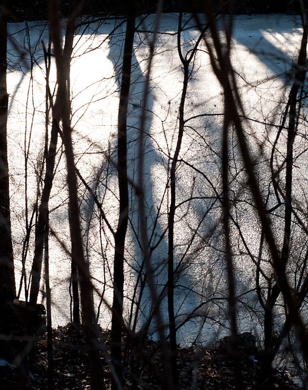 Ice-shadows-silhouettes