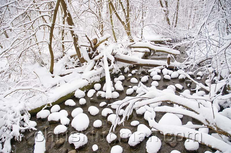 Snowy_ravine