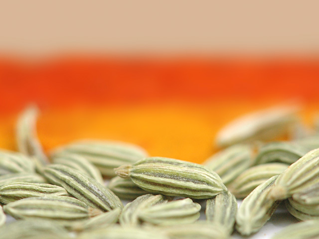 Fennel_seeds2