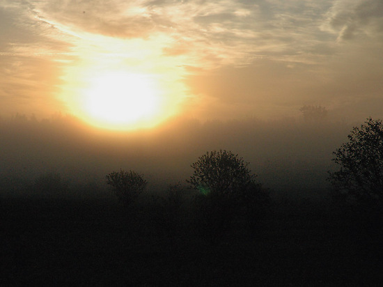 foggy_sunrise