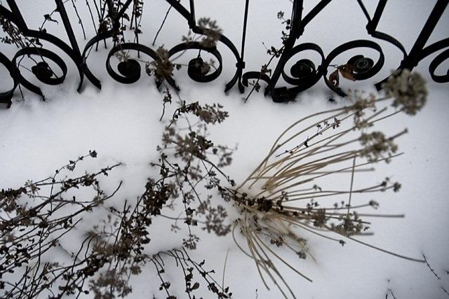 Snow_patterns